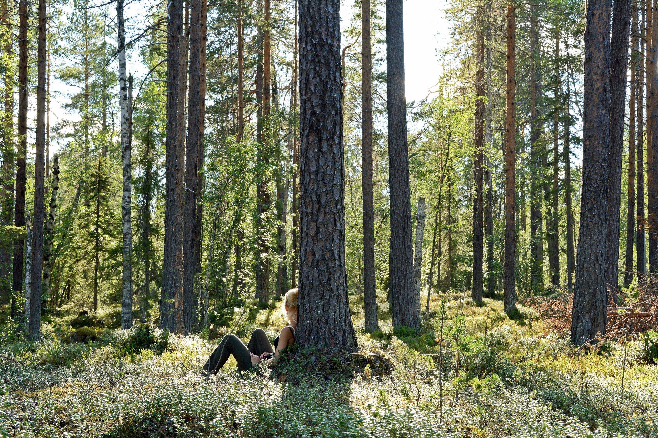 Hitta lugnet med Naturen