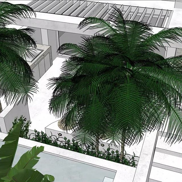 I love the evolution of design 🙌🏼🌿 Which one will the client go for.. 1 or 2?? (#Swipe for the initial concept) We'll find out today at our meeting 🙈 Personally, I'd go for 1 cos, well, I can't go past a palm tree 🌴 What about you?? x #MoodyGardenByMonPalmer  PS. My next round of #TheSketchUpSuccessFormula kicks off this Monday & registrations CLOSE TOMORROW!! When you sign up you get my upcoming landscape design course for FREE (valued at $999) Hit the link in my bio for more deets & to join us!! Hope to see you in there 🖤 Mon x  #design #sketchup #online #course #garden #landscapes #creatives #designers #exterior #interiors