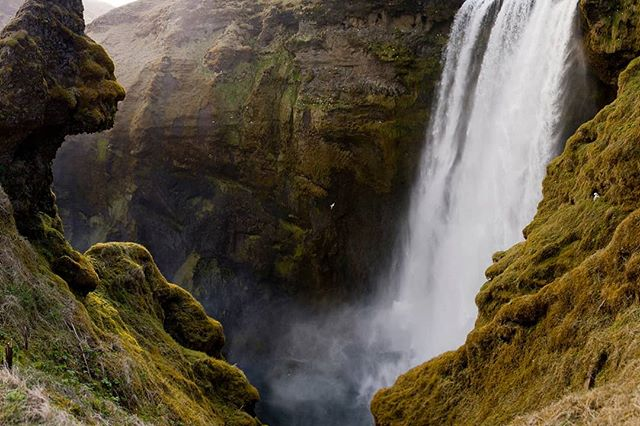 Skógafoss  This was taken a few years ago before all the much needed barriers were put in. You can just make out a face on the rock top left. Zoom in to spot the fulmars. #iceland🇮🇸