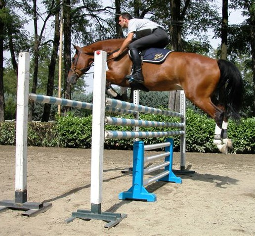 Jumping in a Total Contact Saddle