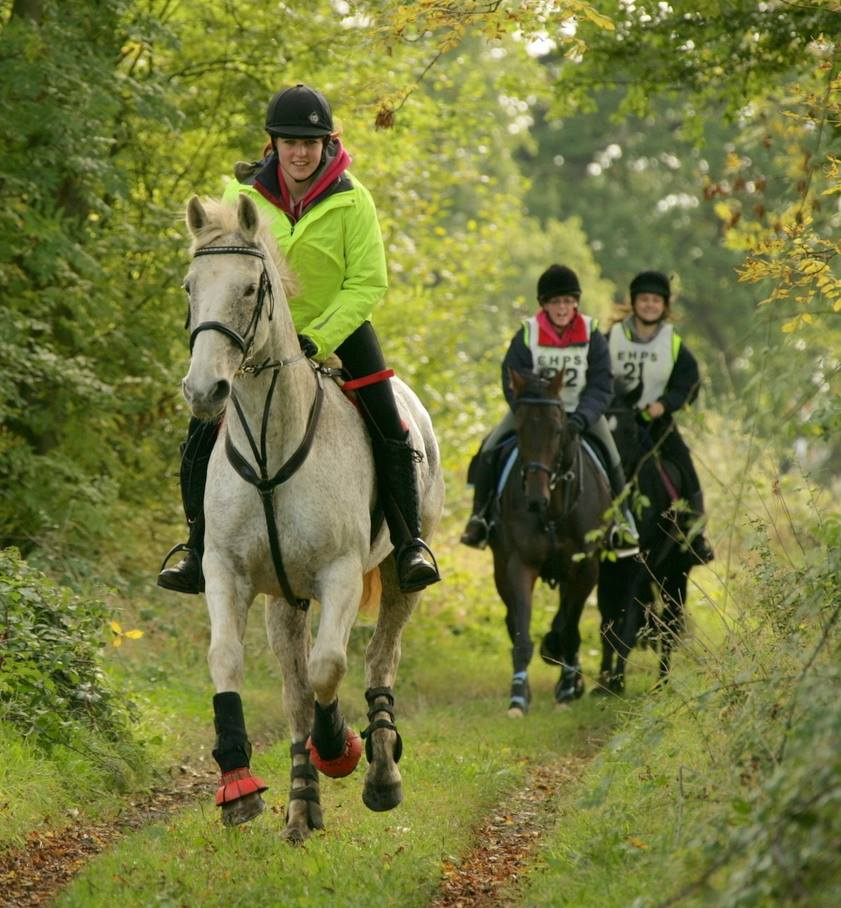Pleasure riding in Total Contact Saddle