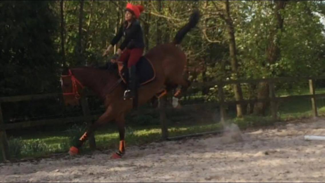 """The TCS client """"RB"""" was able to sit out the antics of her horse and felt secure in her TCS despite some 'hairy' bucks - """"RB"""" told us that this was pretty normal for her horse and it had NOTHING to do with his TCS."""