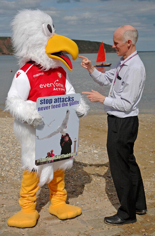 gull signs 2.jpg