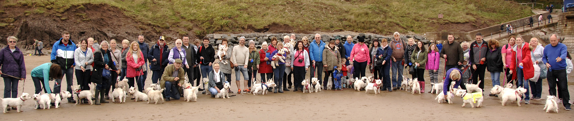 Some of the Westies and their owners on Filey beach (to order photos ring 353597)