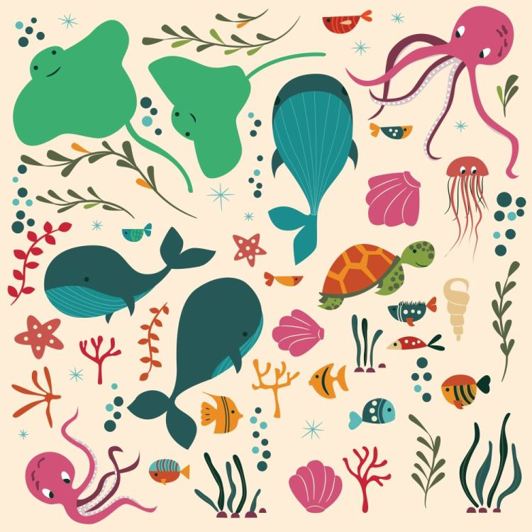 Collection of colorful sea and ocean animals, whale, octopus, st