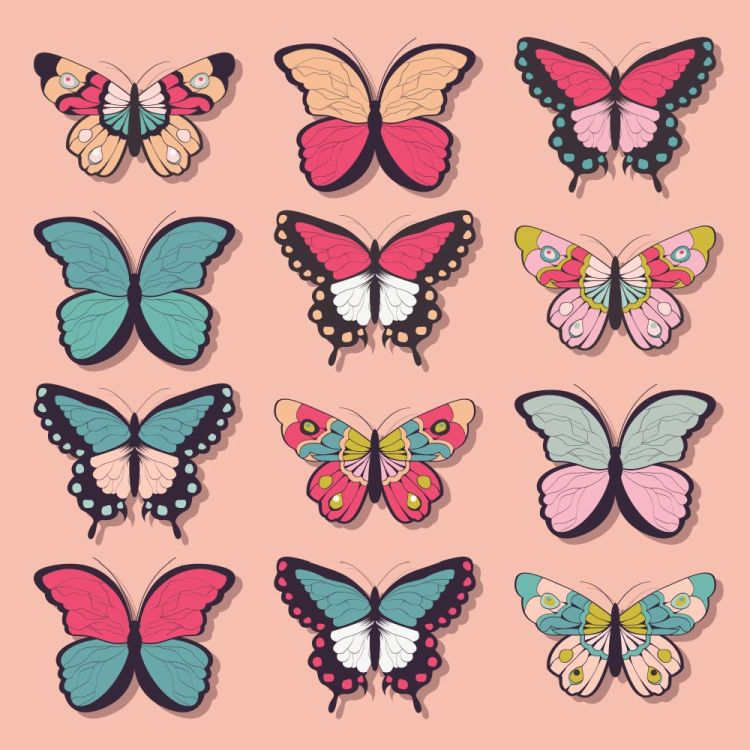 Collection of twelve colorful hand drawn butterflies, pink backg