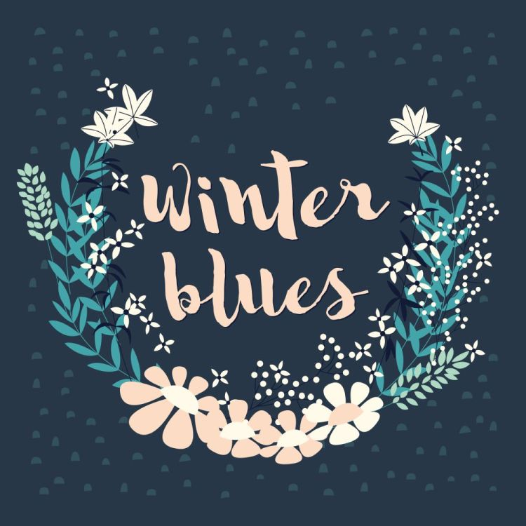 Colorful collection of winter floral arrangement and flowers for