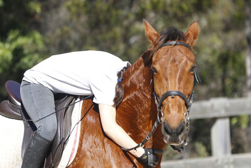 Childrens Riding Lessons -