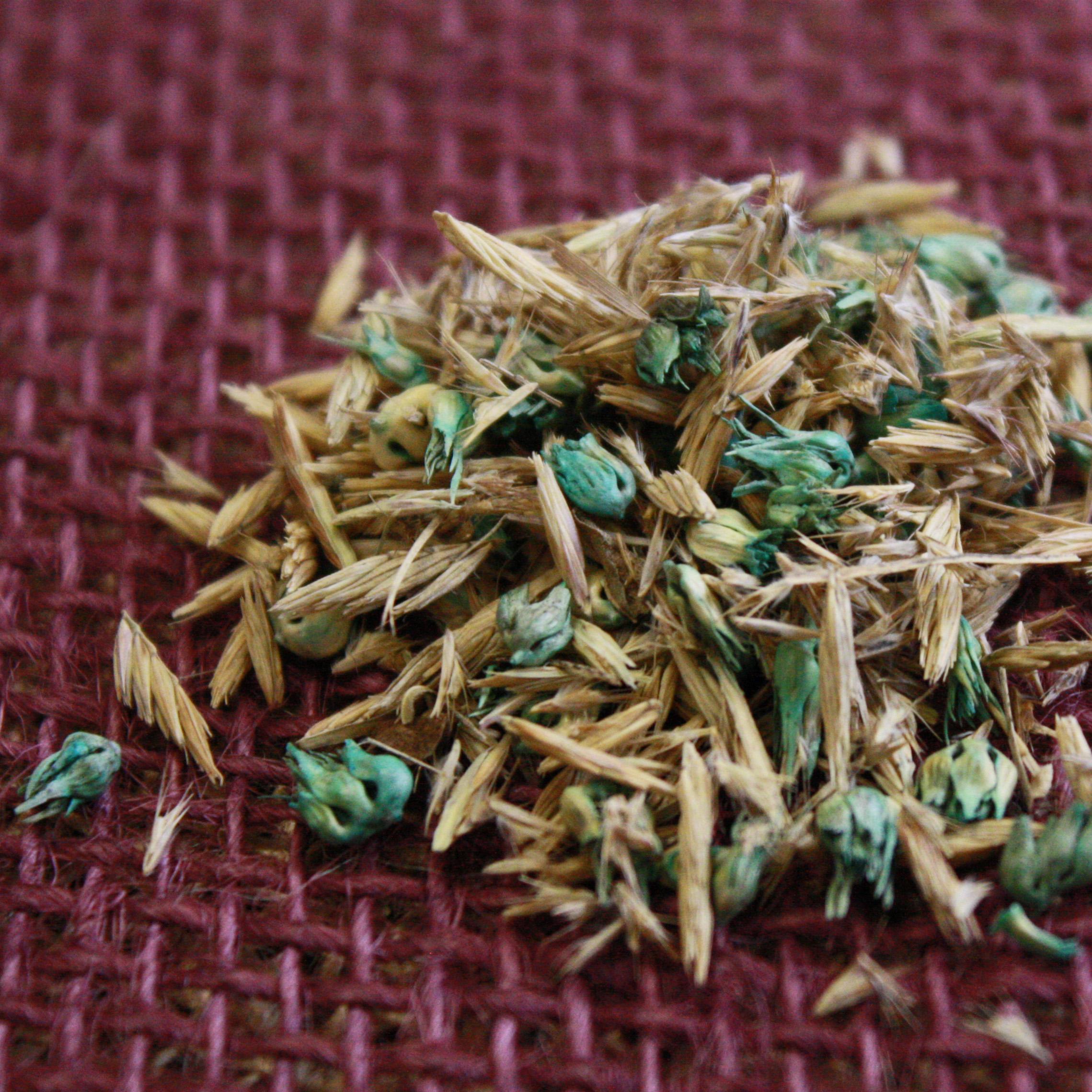 King's Native Short Grass Mix