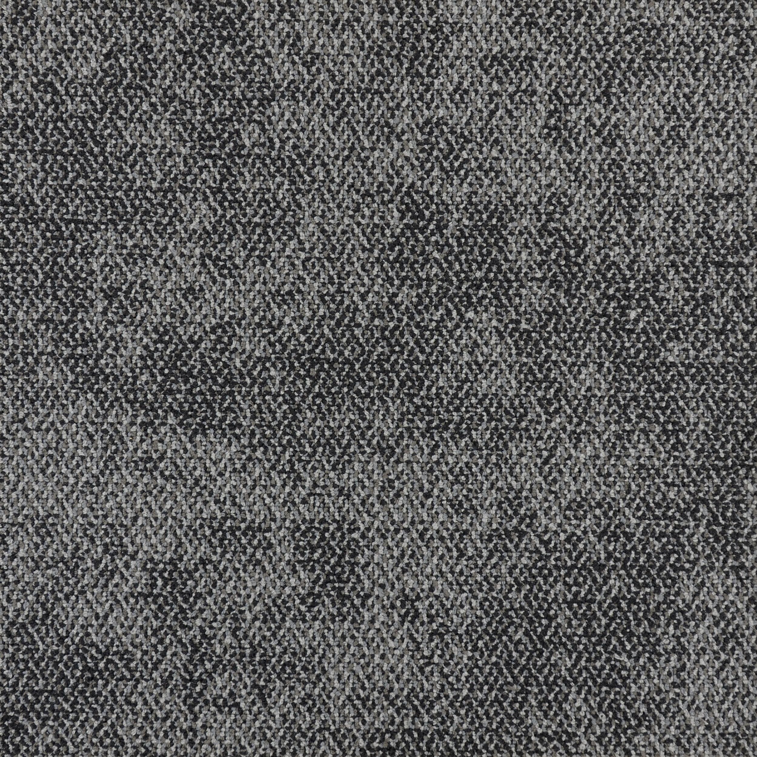 LIZARD — 15124