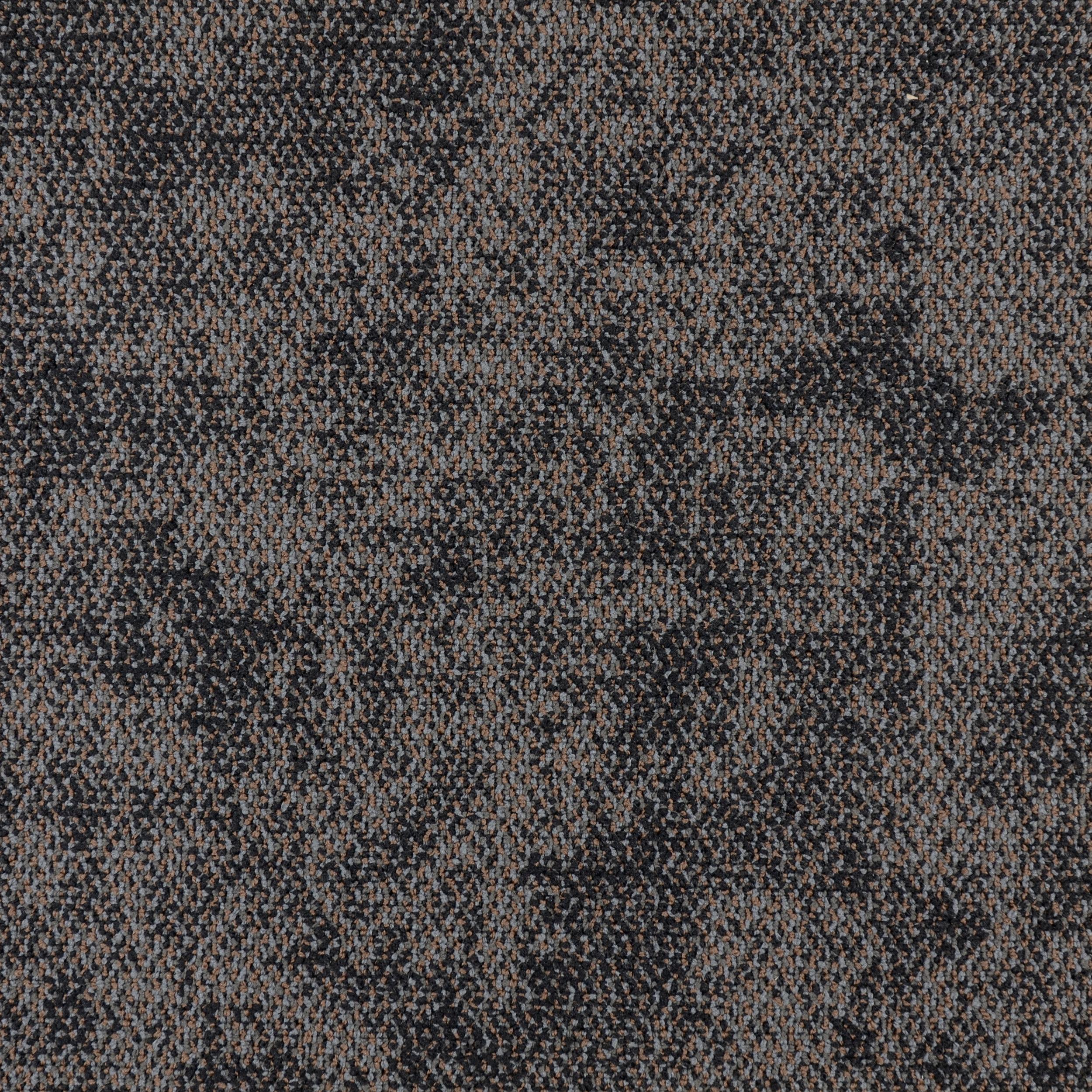 IGUANA — 75067