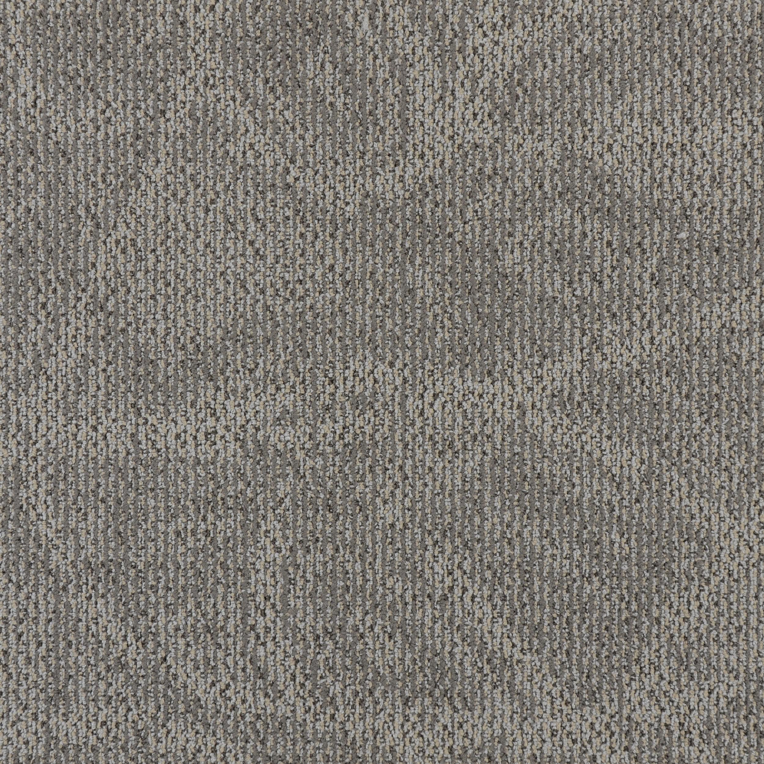 PAIA — 50016