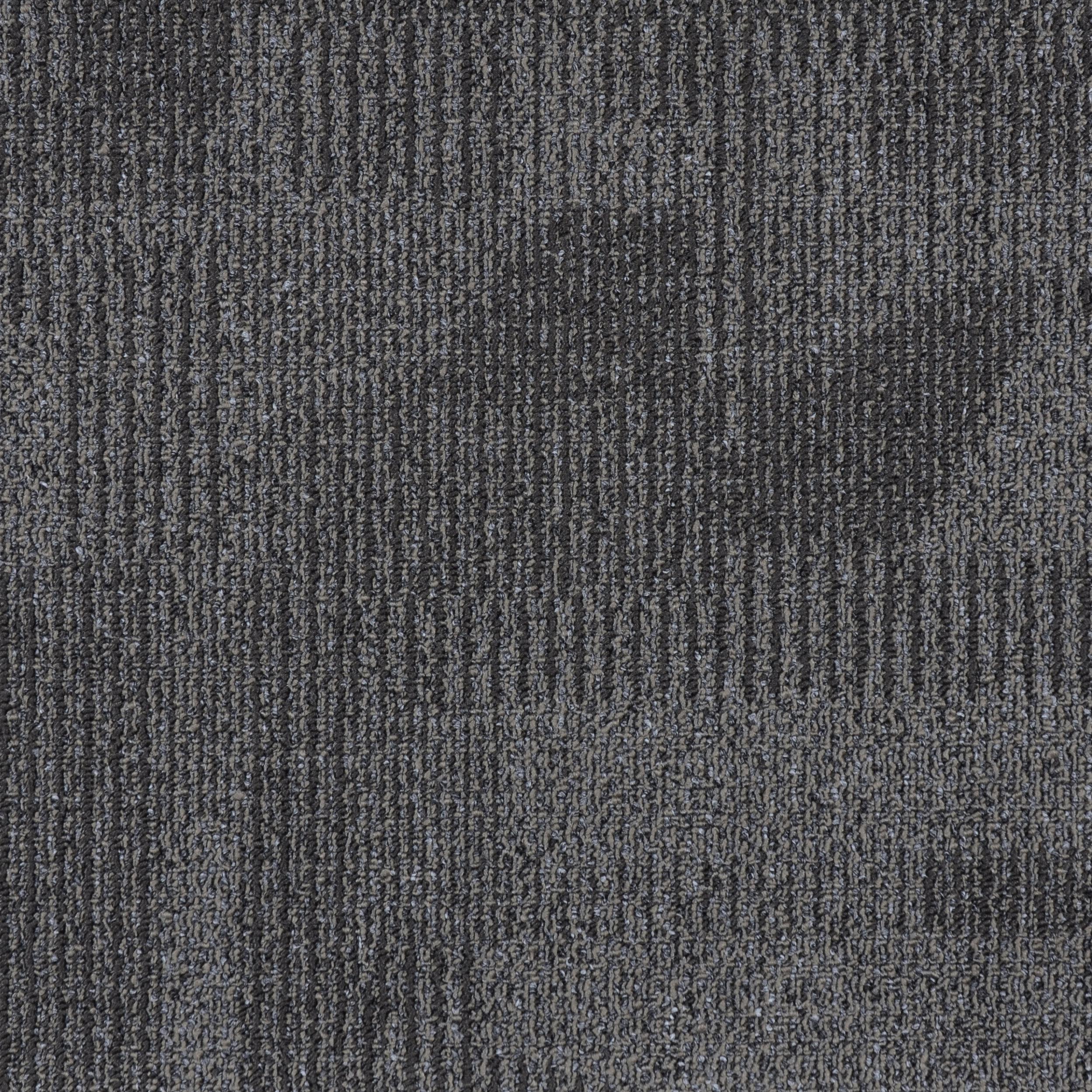 WHITEWASH — 15021