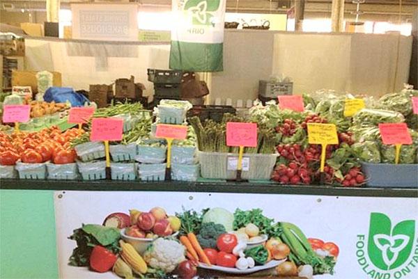 patricia's produce.jpg