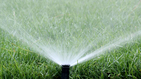 Is your irrigation effective?