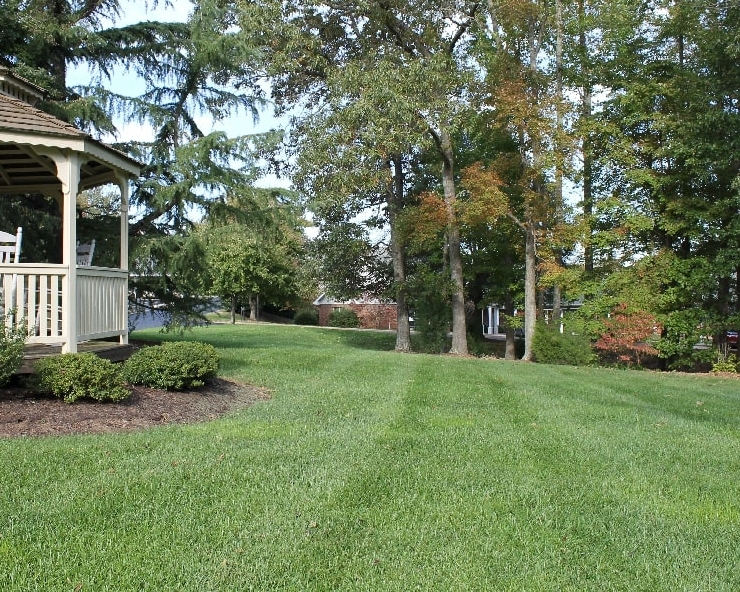 Lawns that are aerated regularly utilize water and fertilizer more efficiently, making them healthy and green.