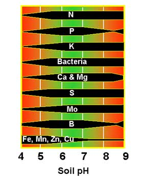 Relative availability of various nutrients at different pH levels.