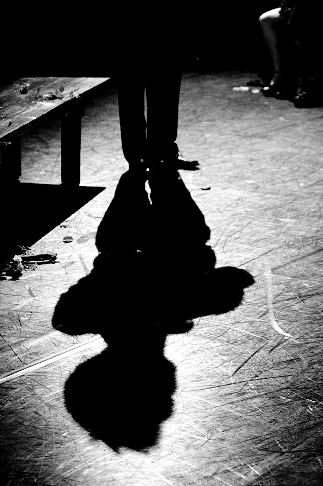 The 10th Muse. Misha Penton, soprano, concept, director. Alison Greene, Michael Walsh, Shelley Auer, Dennis Arrowsmith, Jill Alexander Essbaum, Kade Smith, with Stephen Jones, piano, et al. Photos: E. Melear.