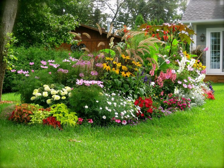 Best Containers for Small Gardens.jpg