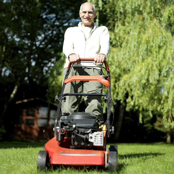 push lawn mower.jpg