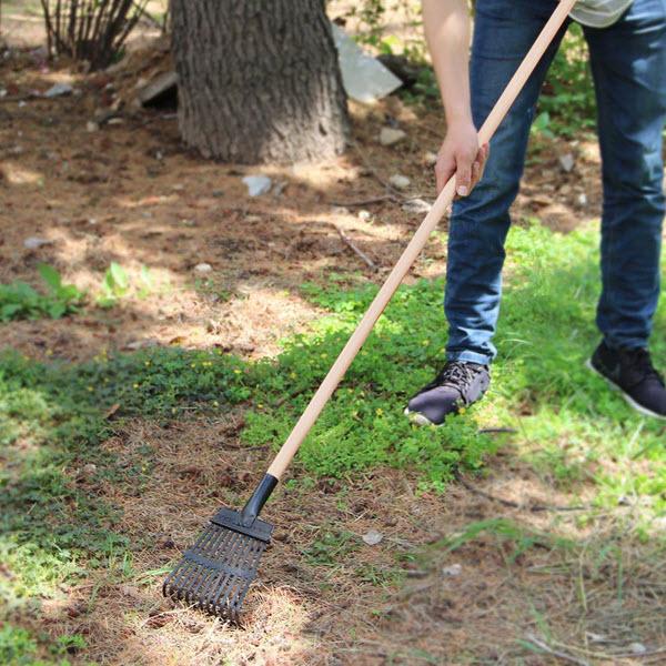 shrub rake.jpg