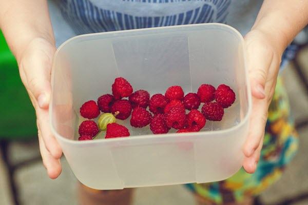 children eating fruits and veggies.jpg