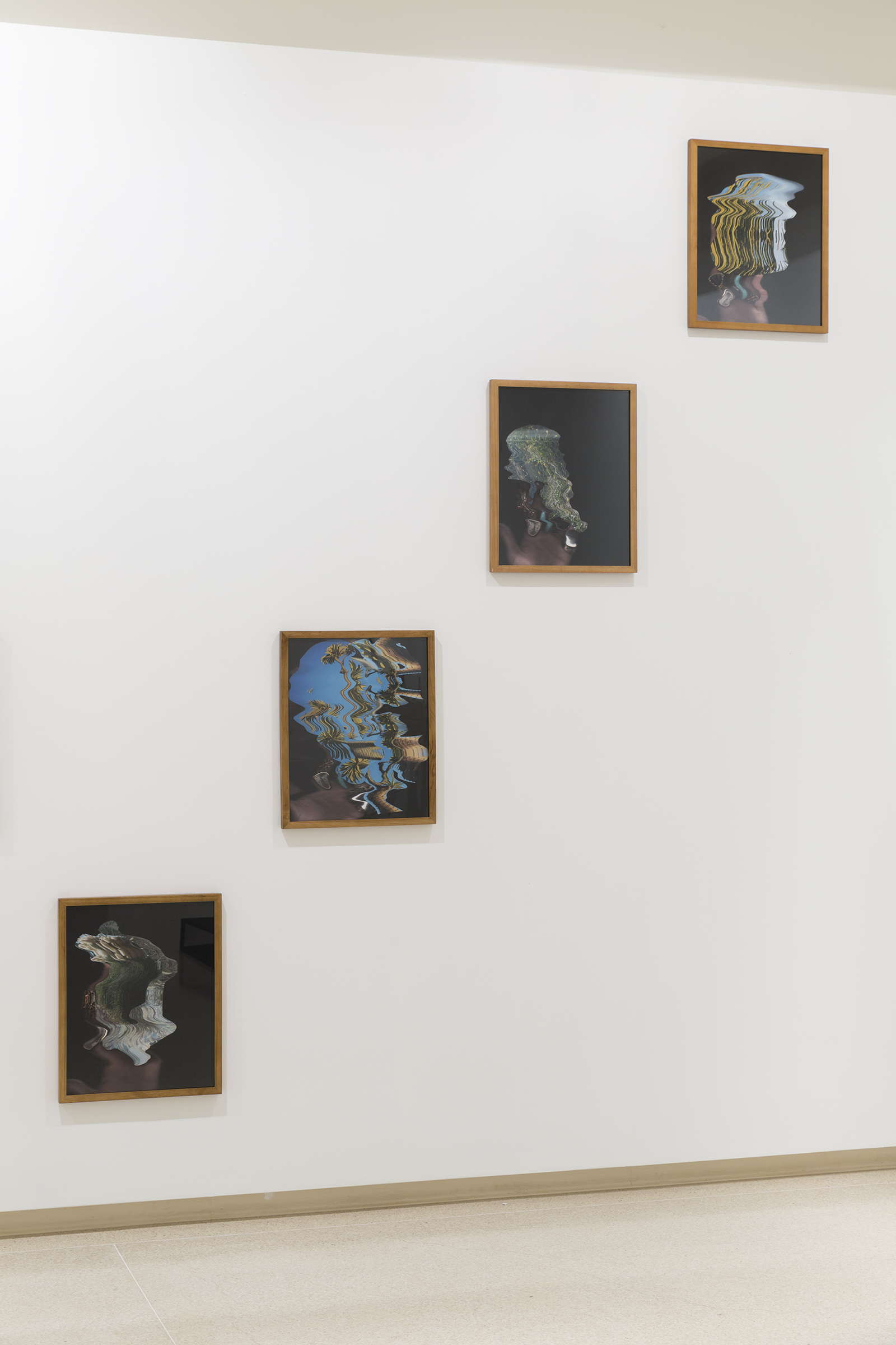 """Bent 1-13 , 2018 20 x 16 inches Silver halide archival print, artist frame  Installation view: """"Garden Variety"""" at the Brand Library and Art Center, Glendale CA"""