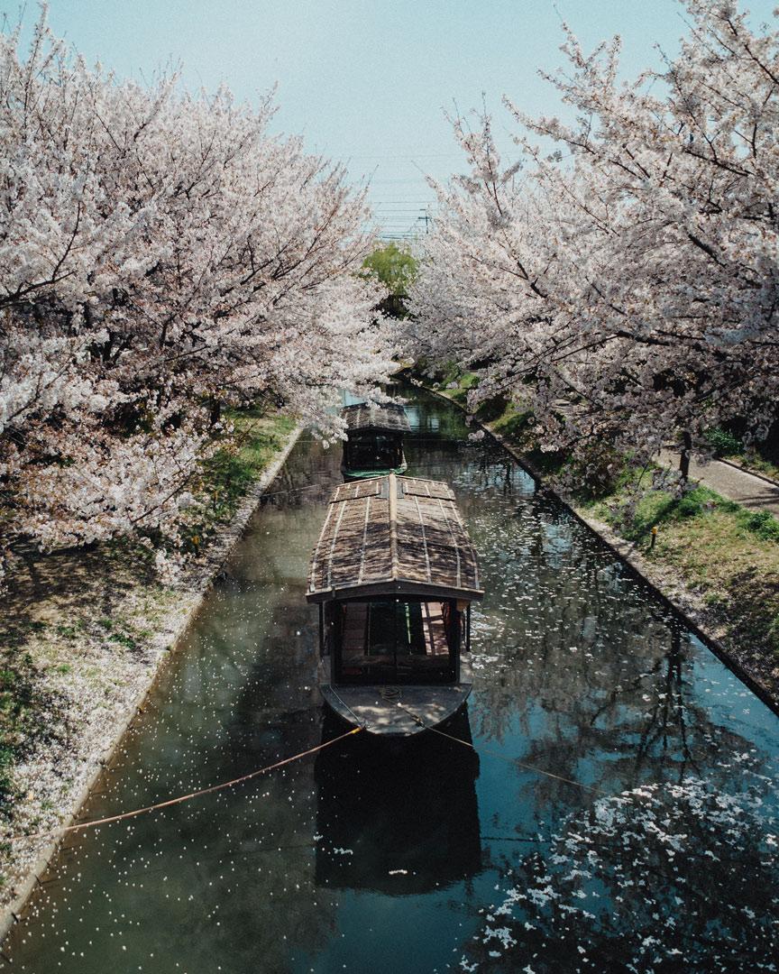 photographe-japon-13.jpg