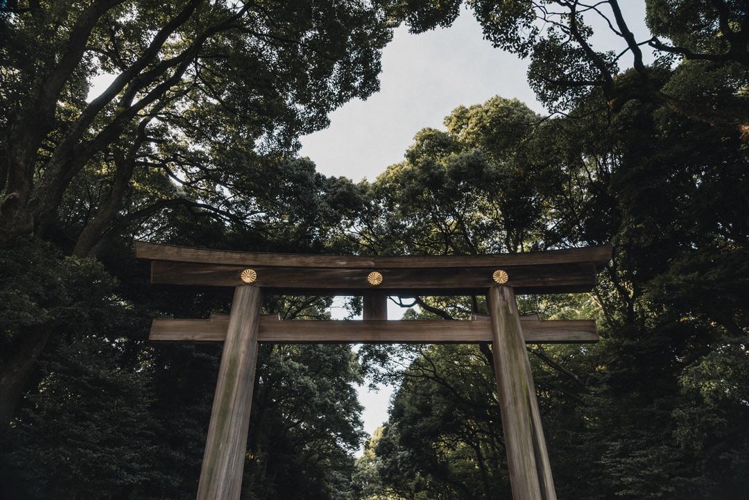 photographe-japon-torii.jpg
