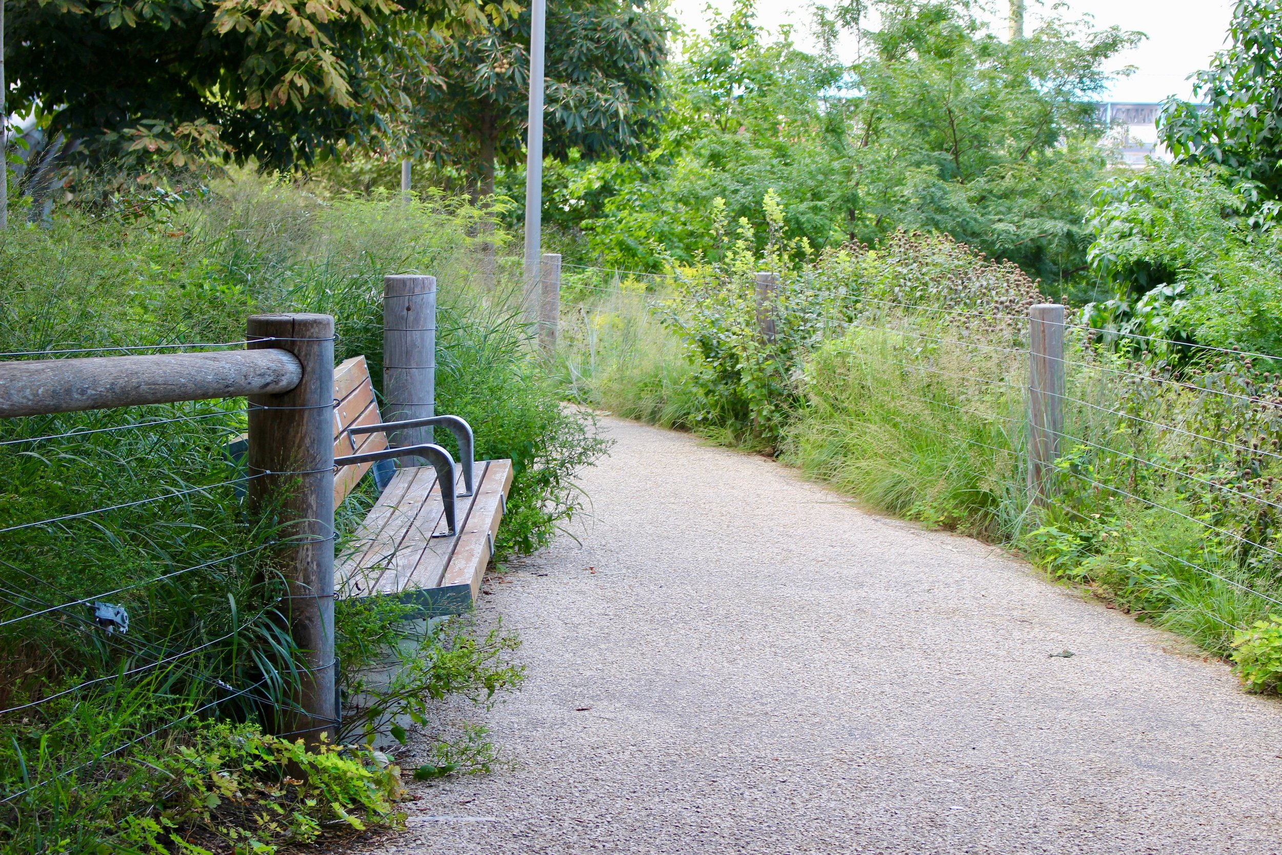 """The bucolic, natural walking path through Brooklyn Bridge Park. Your energy drops and relaxes amidst these surroundings, and it's like, """"Am I really in...Brooklyn?"""""""