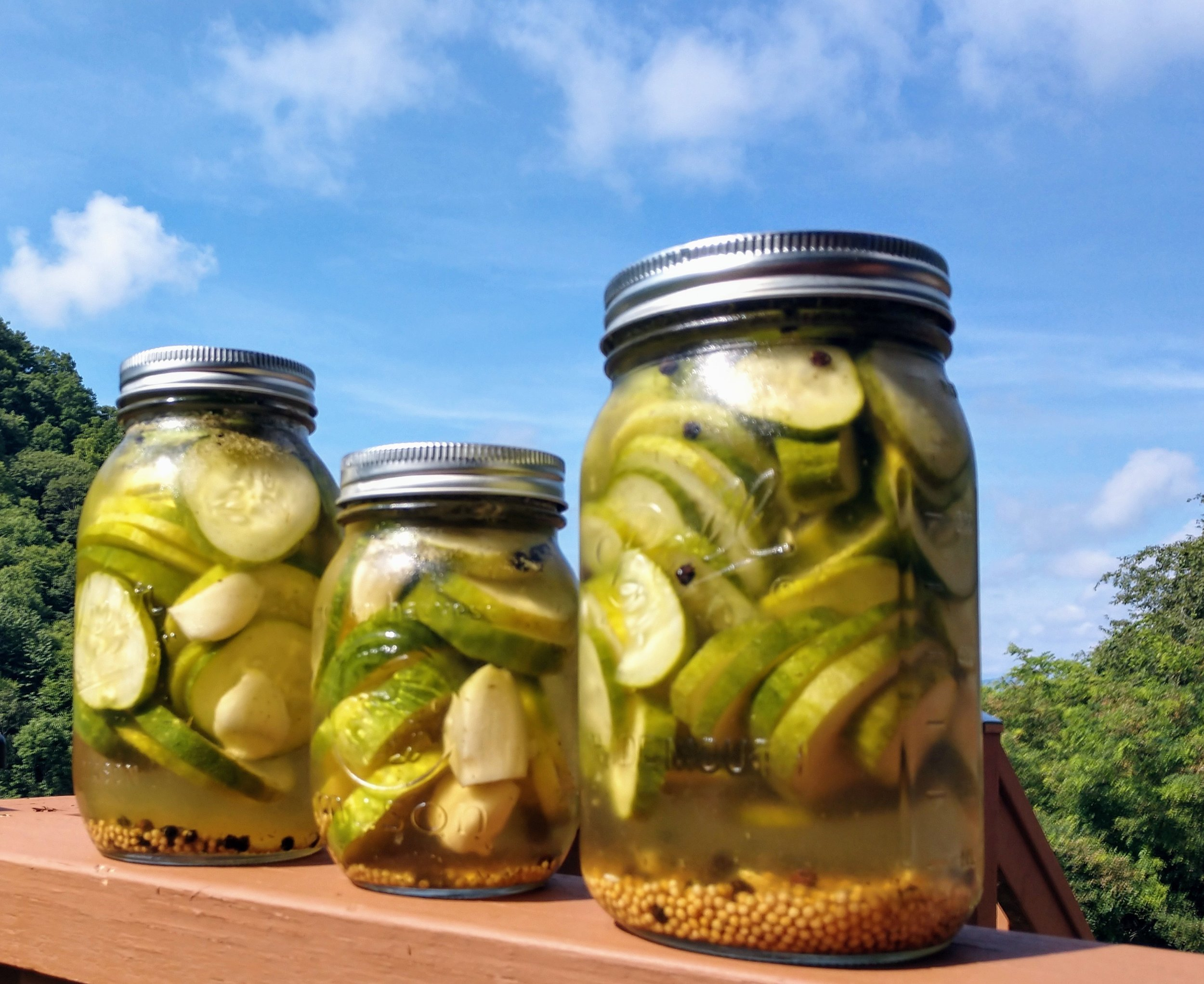 Refrigerator Pickles.jpg