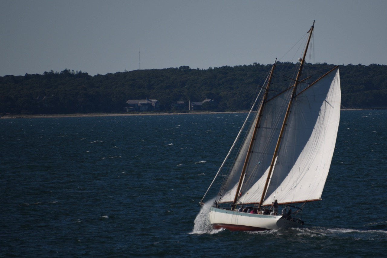 Sailboat taken from the Vineyard Haven ferry 2016