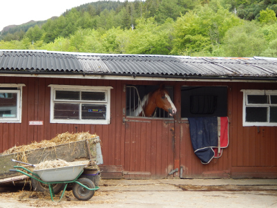 Lettershuna Stables