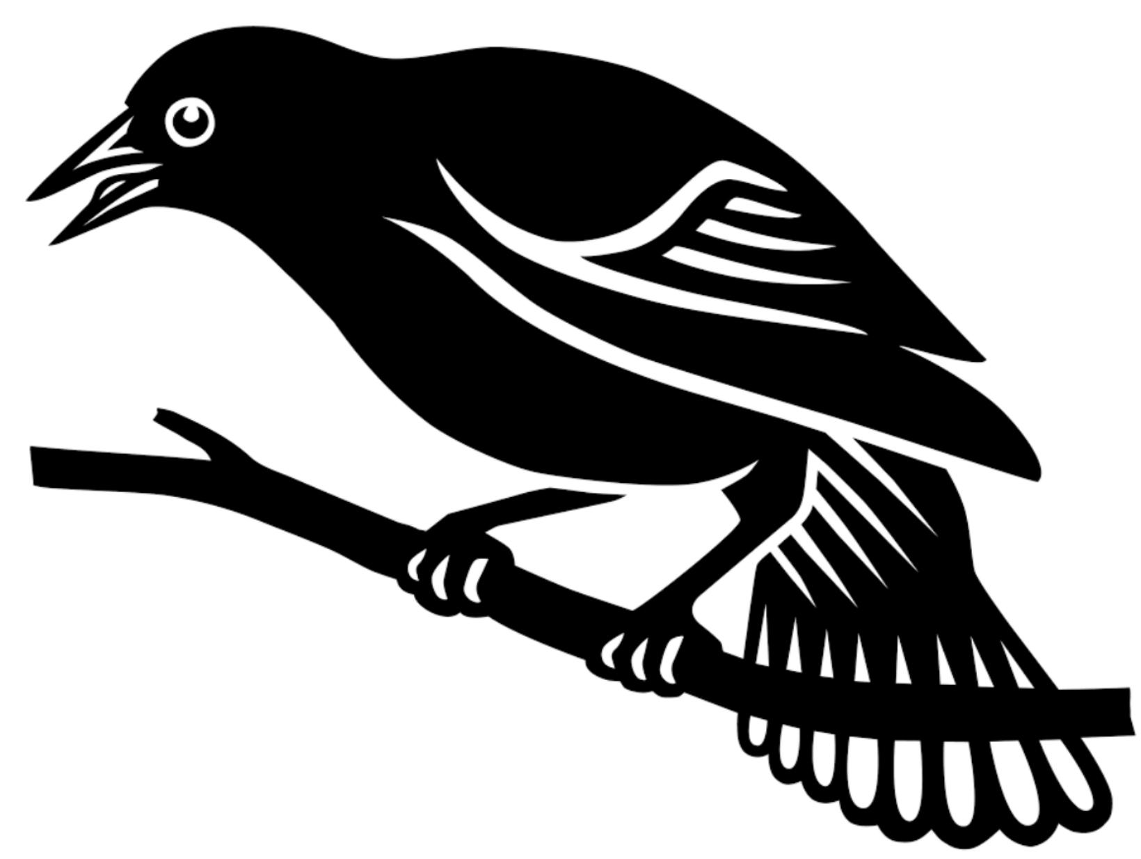 BlackBirdNewLogobig.jpg