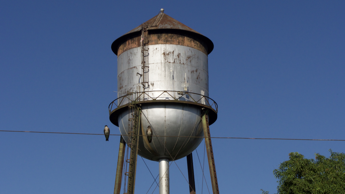 Fordlândia water tower