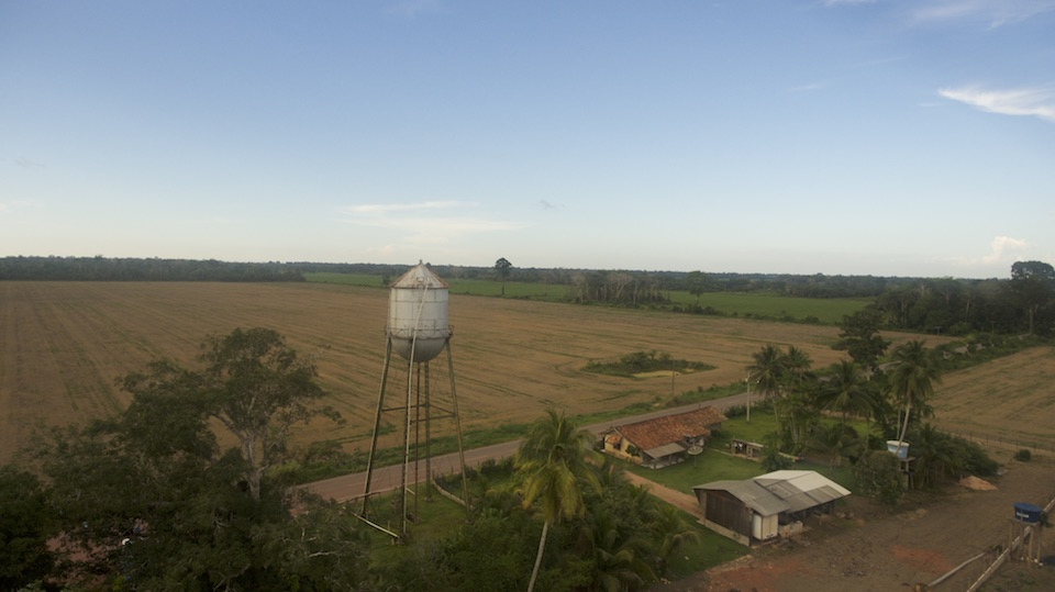 Soybean cultivation in Belterra surrounding the famous water tower.