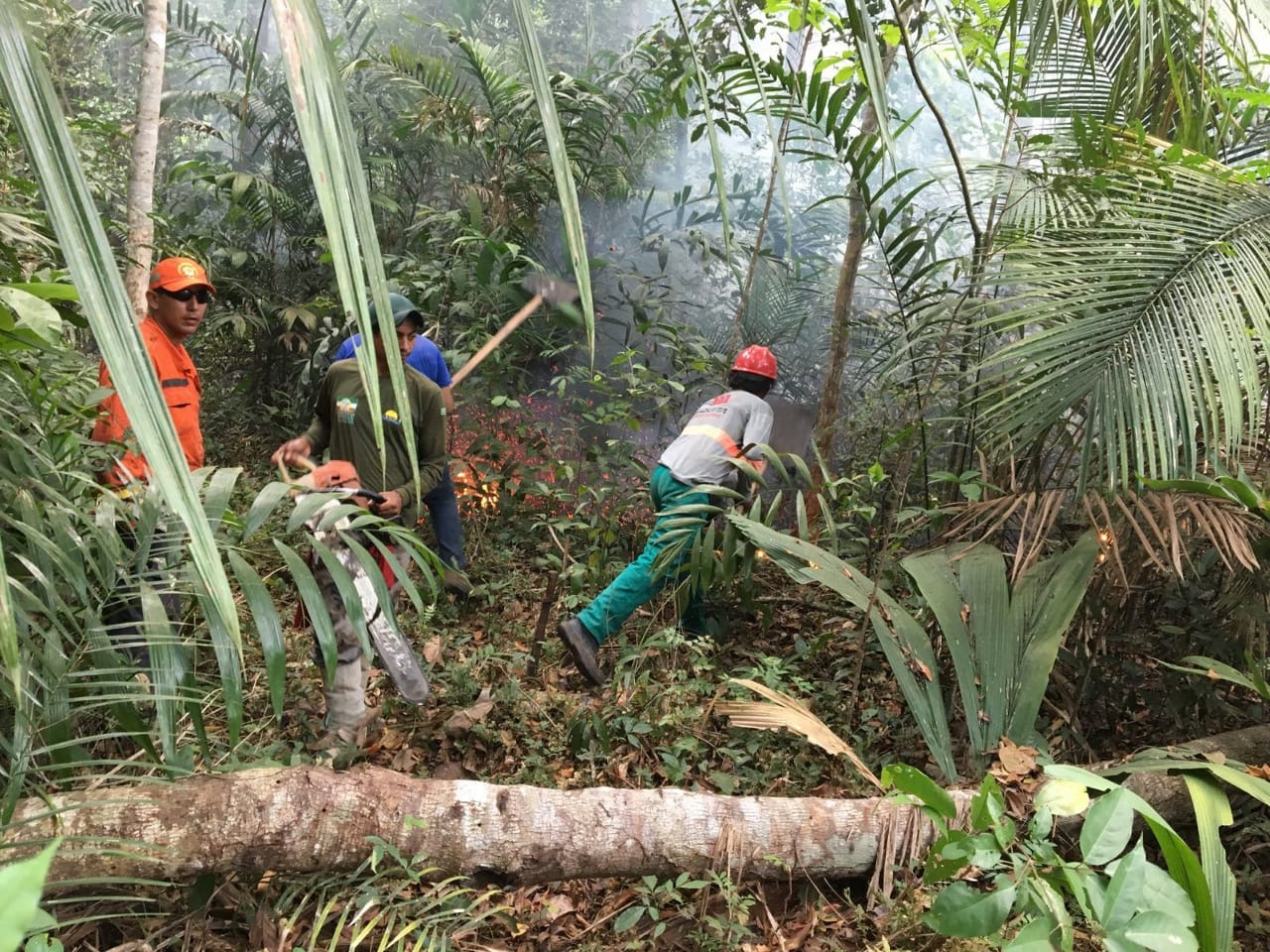 Firefighters brigade attempting to control the spread of the flames in the Aramanaí forest