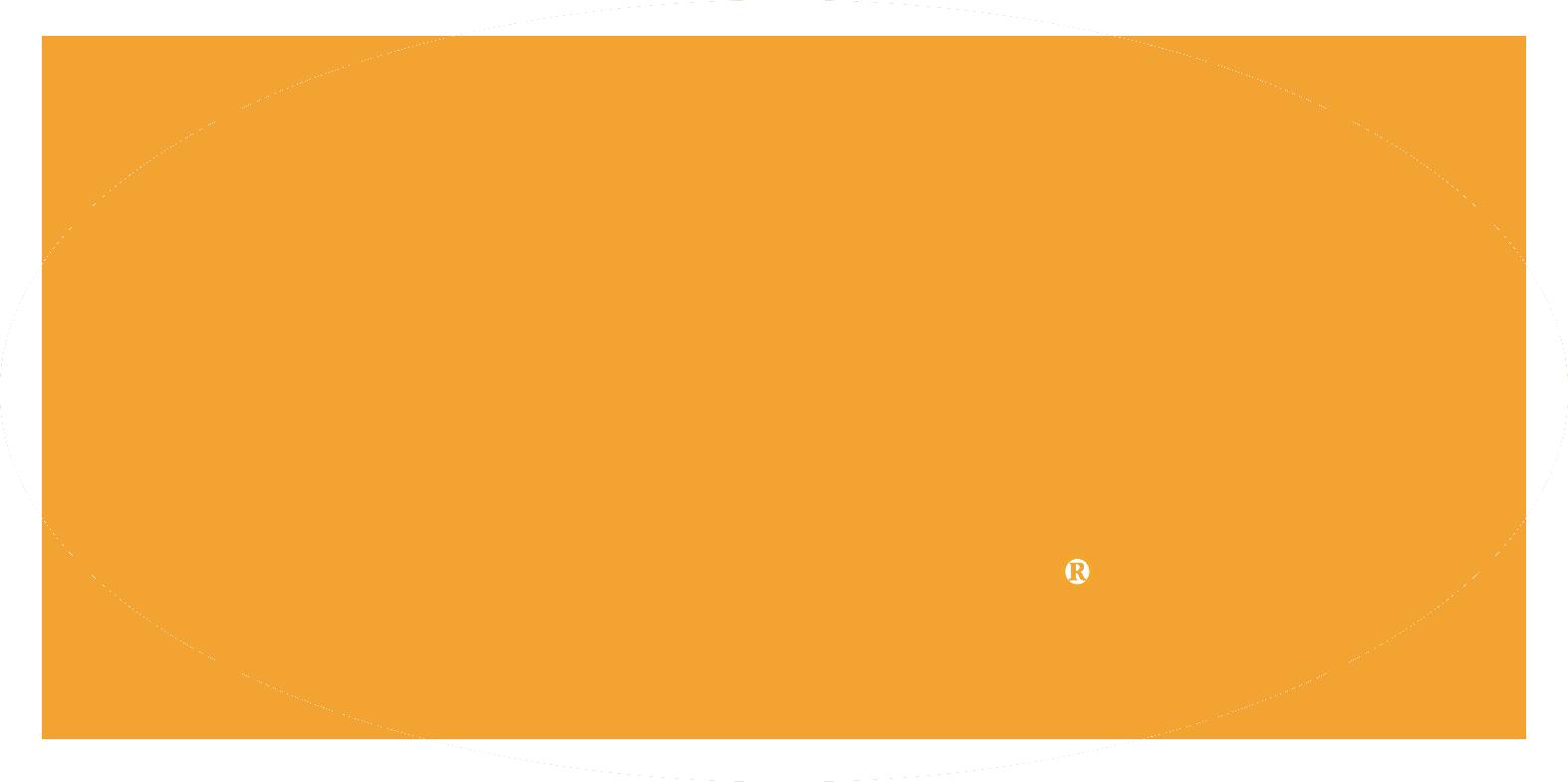 PURE Logo Orange_NB copy.png