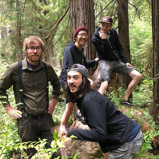 Rolling through California on our first tour, we stopped in the redwoods!  #california #redwoodsnationalpark #redwoods #wickedshallows #music #band #banjo #guitar #bass #drums