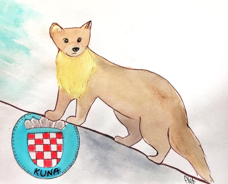 In inglese: Pine Marten, in Croato: Kuna