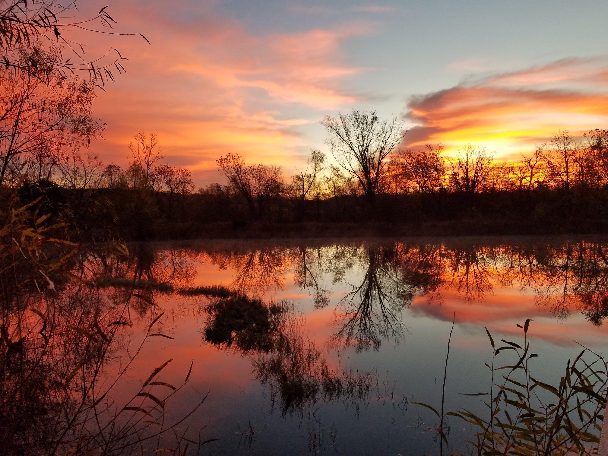 Courtesy of Trinity River Audubon Center