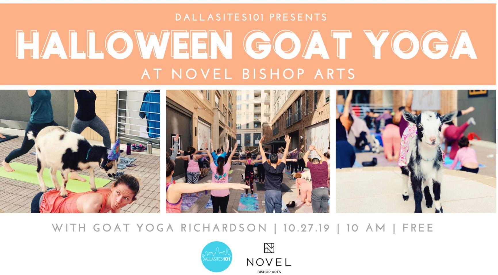 Halloween Goat Yoga Dallasites101