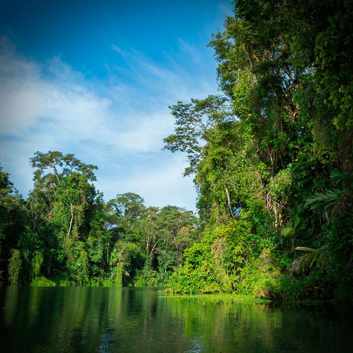 Galeria-Biodiversidad-canal-700x700.jpg