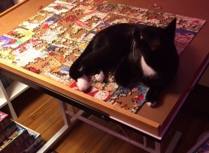 Smooch calls this: What cat? What Christmas puzzle?