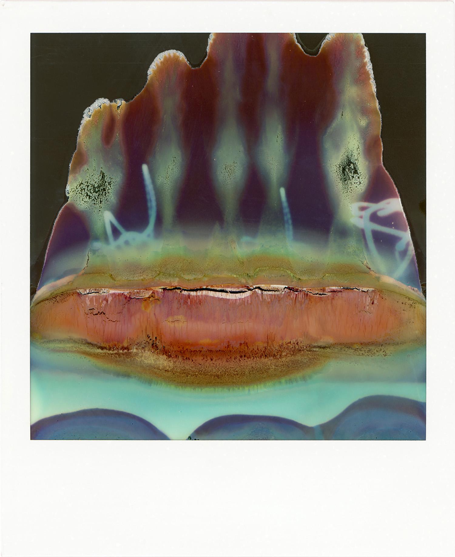 Ruined Polaroid #45, 2011