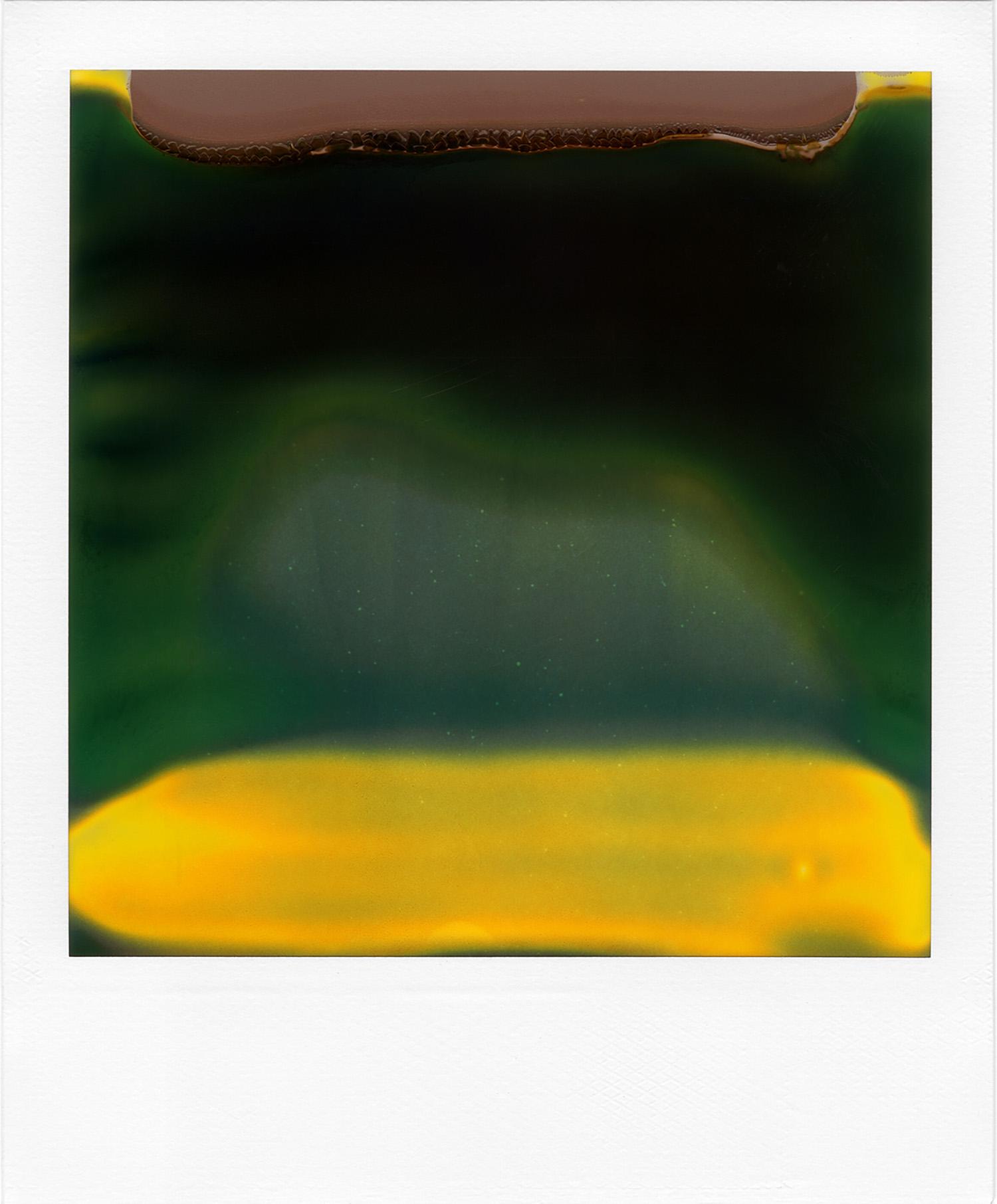 Ruined Polaroid #40, 2011