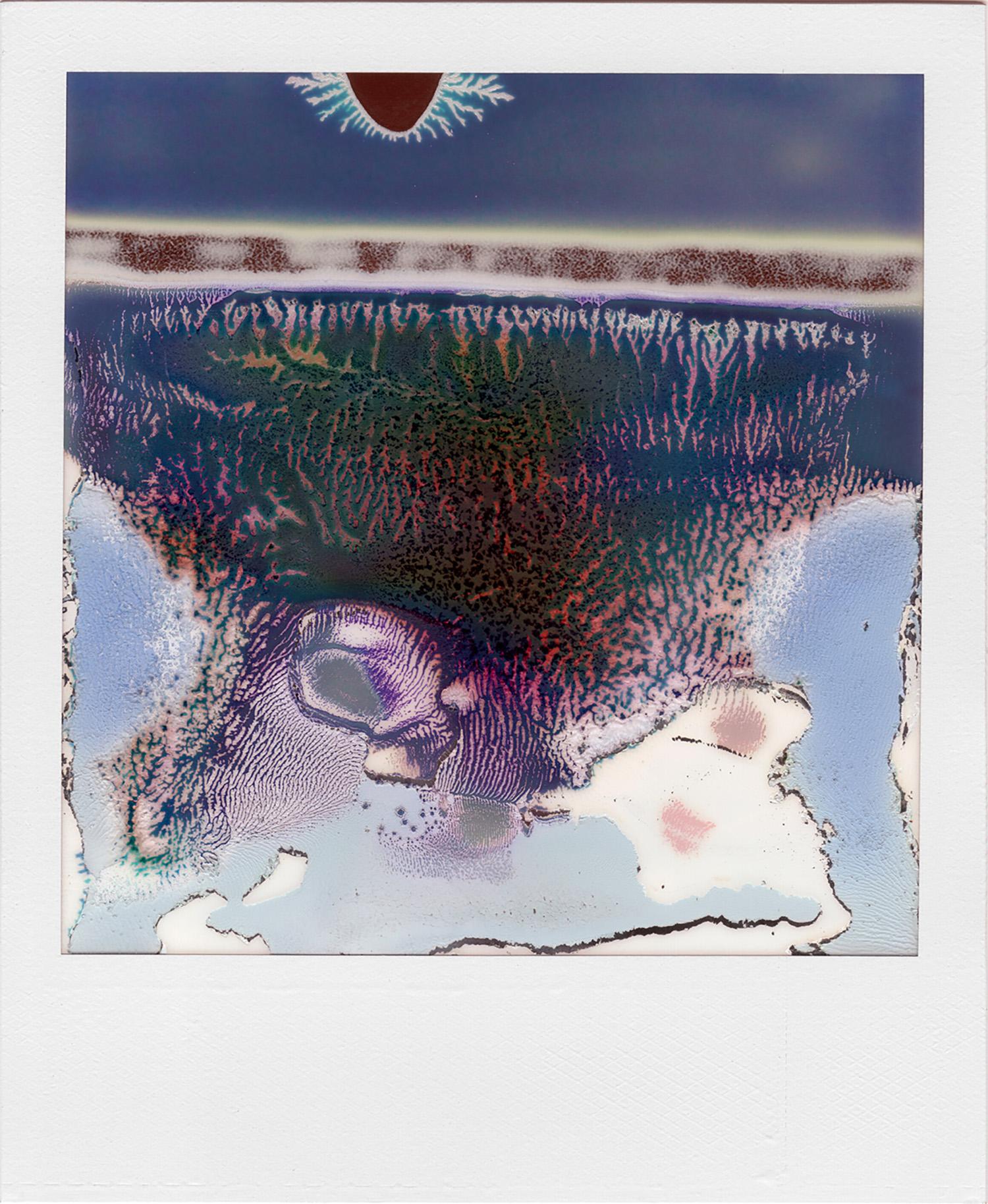 Ruined Polaroid #14, 2011
