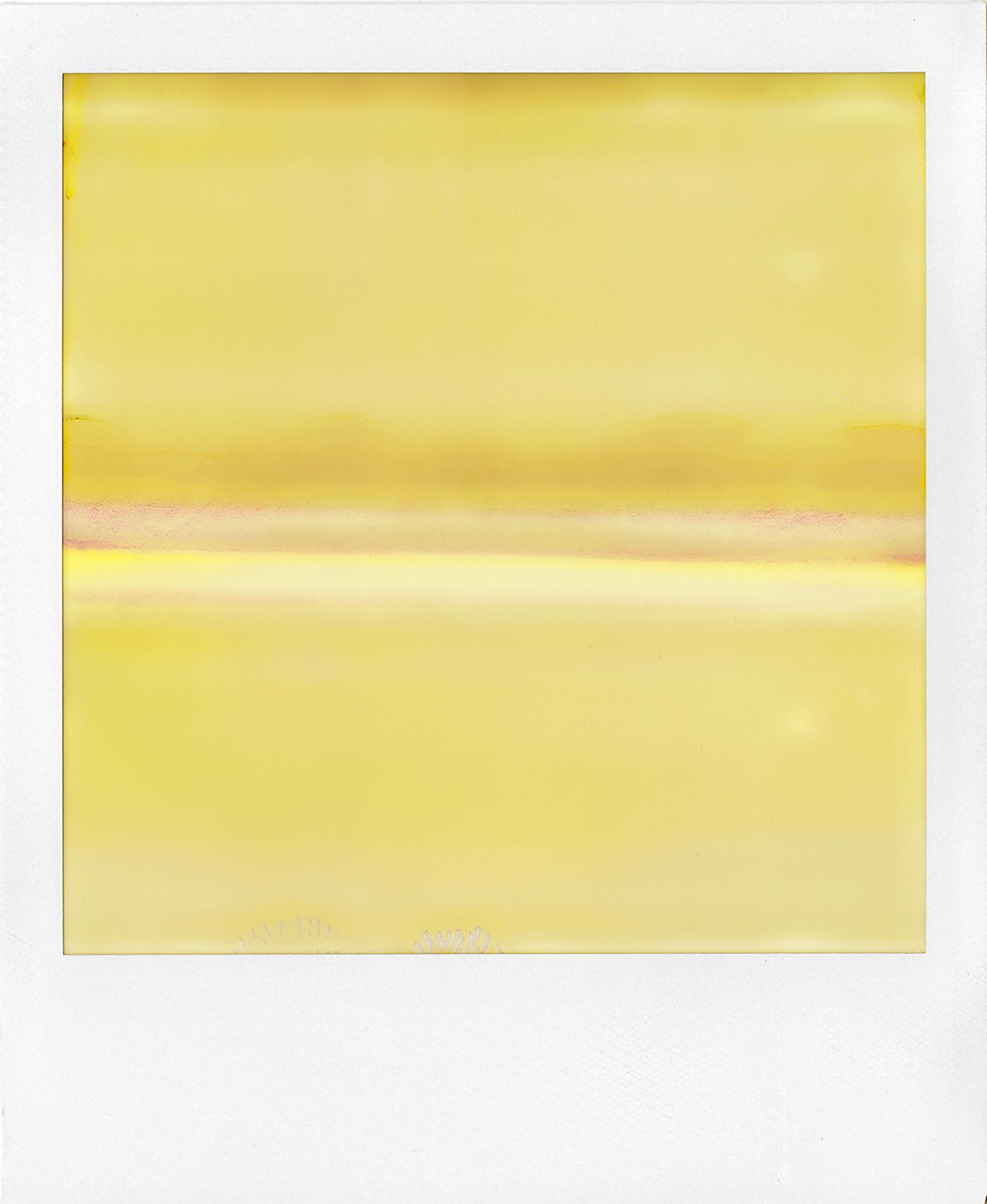 Ruined Polaroid #38, 2011