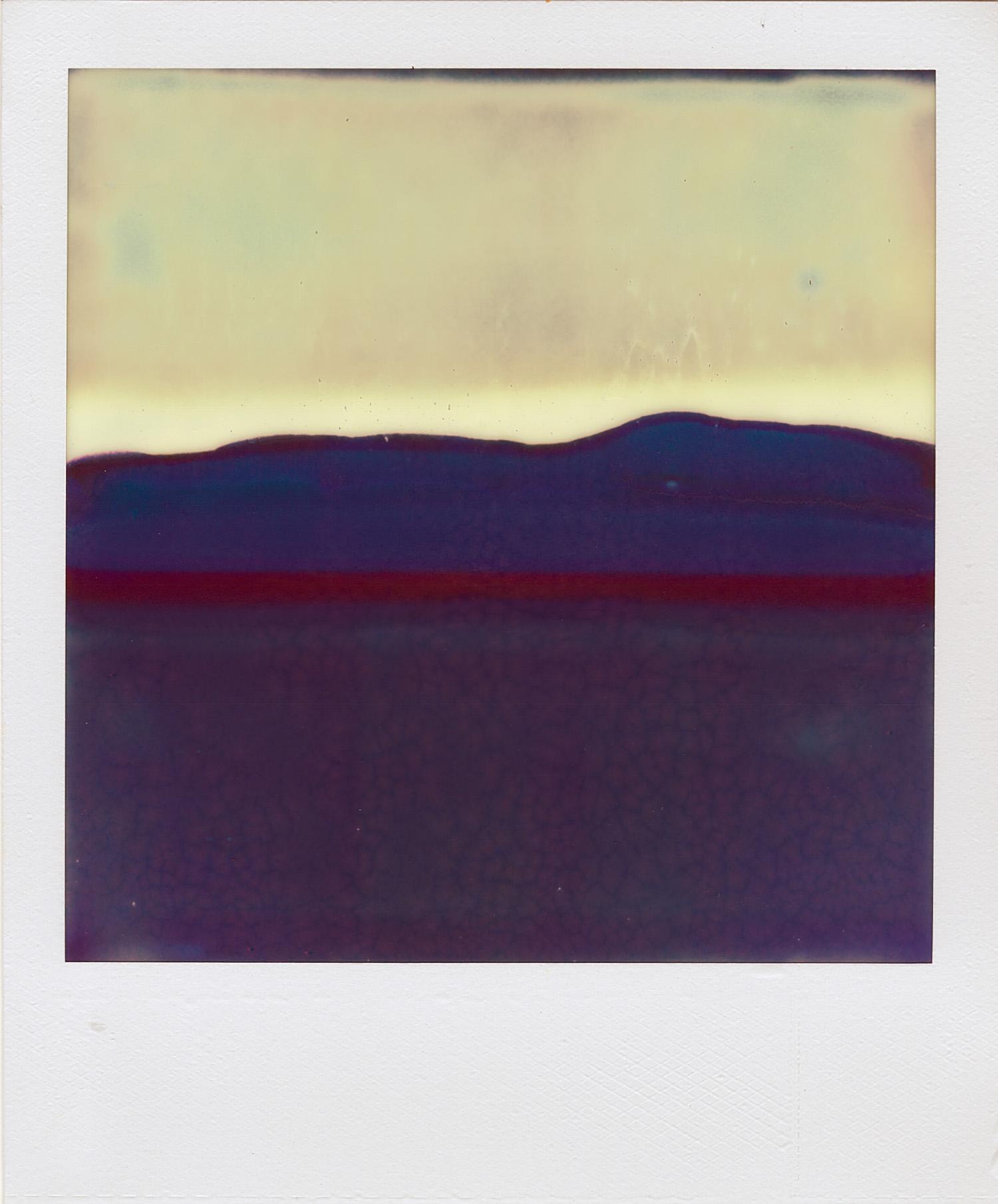 Ruined Polaroid #3, 2011