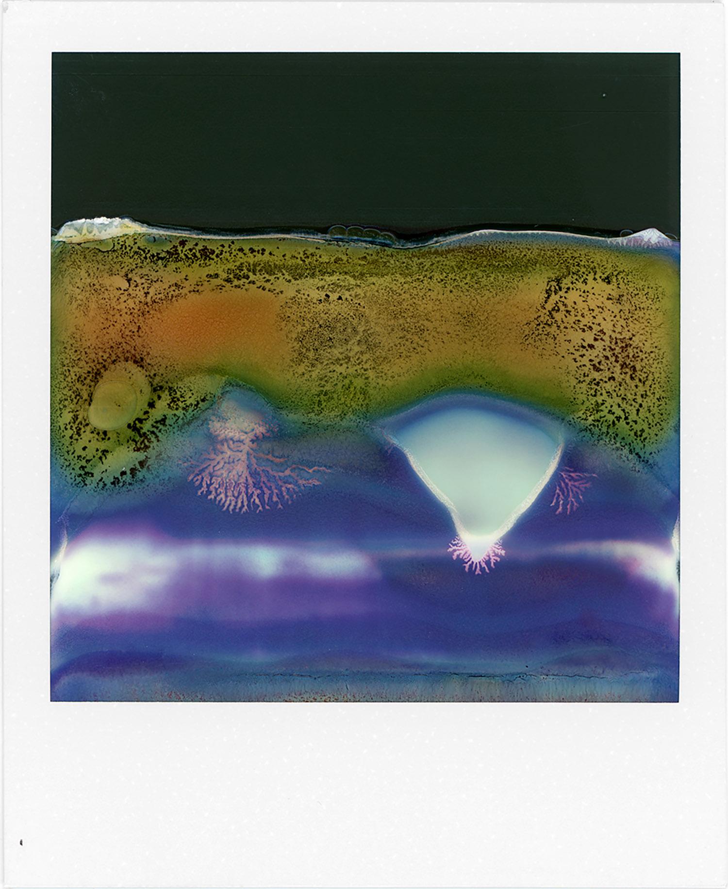 Ruined Polaroid #47, 2011